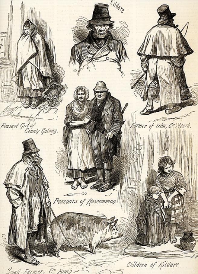 1880 irish illustration